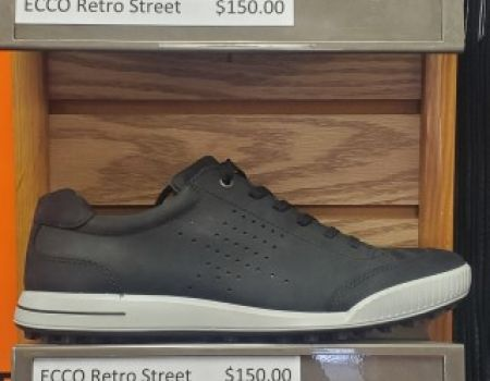 Ecco Shoes Pic